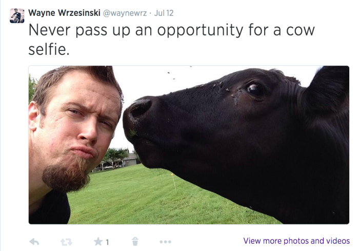 Selfie With A Cow